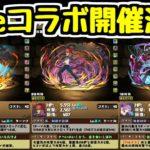 【パズドラ】Fateコラボ開催決定!! 桜だけの正義の味方!!!!!