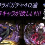 【パズドラ】Fateコラボガチャ 40連で新キャラを揃えたい