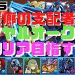 【パズドラ】蒼戦帝ロイヤルオークで裏魔廊の支配者初クリアを目指す!