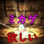【パズドラ】ミカゲが欲しい!!