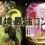 【今更】ガイル×撫子が最強すぎる ガイルは確保必須 裏魔廊の支配者