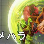 超反応サマソ ウメハラガイル対アルマスバーディー Daigo Umehara(Guile) VS TBE WEATHER(Birdie) FT2