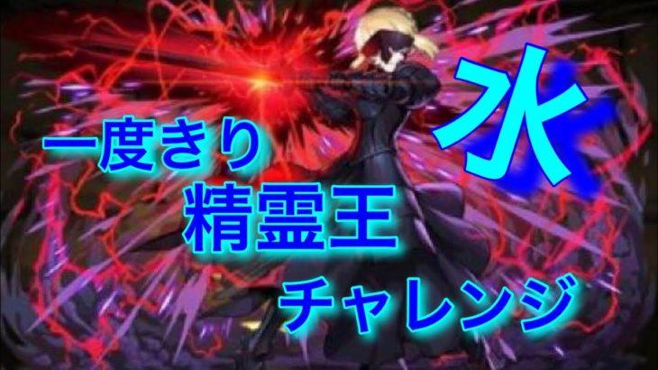 「パズドラ」一度きり精霊王チャレンジ水~セイバーオルタパーティーでGO!!