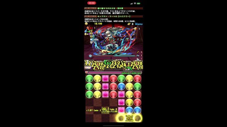 パズドラ 裏魔廊の支配者 羽川×マーベル