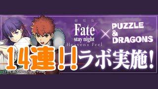 【パズドラ】Fateコラボガチャ!追いガチャ14連!!